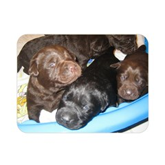 Litter Of Lab Pups Double Sided Flano Blanket (Mini)
