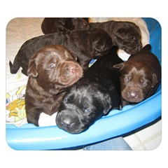 Litter Of Lab Pups Double Sided Flano Blanket (Small)