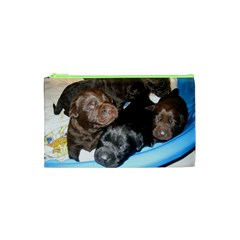 Litter Of Lab Pups Cosmetic Bag (XS)