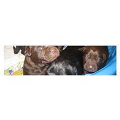 Litter Of Lab Pups Satin Scarf (Oblong)