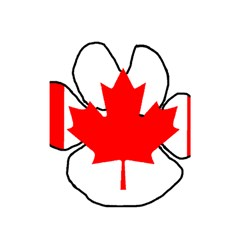 Mega Paw Canadian Flag Shower Curtain 48  x 72  (Small)