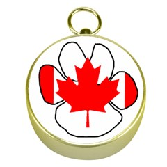 Mega Paw Canadian Flag Gold Compasses