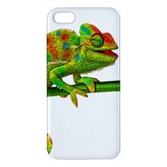 Chameleons iPhone 5S/ SE Premium Hardshell Case