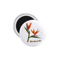 Bird Of Paradise 1.75  Magnets