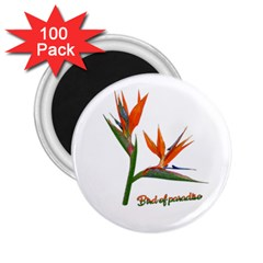 Bird Of Paradise 2.25  Magnets (100 pack)