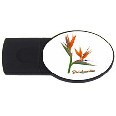 Bird Of Paradise USB Flash Drive Oval (1 GB)