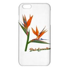 Bird Of Paradise iPhone 6 Plus/6S Plus TPU Case
