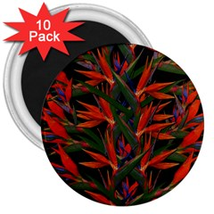 Bird Of Paradise 3  Magnets (10 pack)