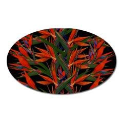 Bird Of Paradise Oval Magnet