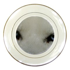 Akita Inu White Eyes Porcelain Plates