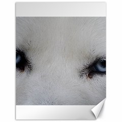 Akita Inu White Eyes Canvas 18  x 24