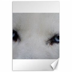 Akita Inu White Eyes Canvas 20  x 30