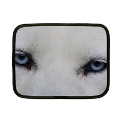 Akita Inu White Eyes Netbook Case (Small)
