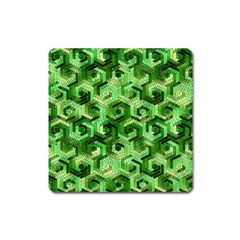 Pattern Factory 23 Green Square Magnet