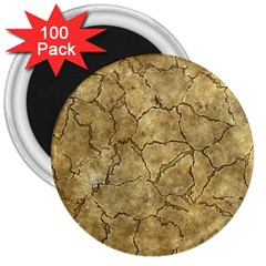 Cracked Skull Bone Surface A 3  Magnets (100 pack)