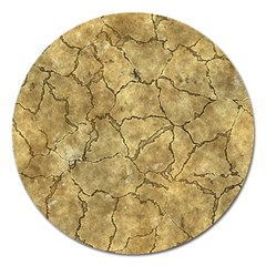 Cracked Skull Bone Surface A Magnet 5  (Round)