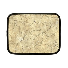 Cracked Skull Bone Surface B Netbook Case (Small)