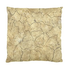 Cracked Skull Bone Surface B Standard Cushion Case (One Side)