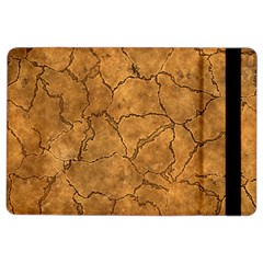 Cracked Skull Bone Surface C iPad Air 2 Flip