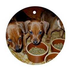 German Pinscher Puppies Ornament (Round)