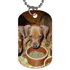 German Pinscher Puppies Dog Tag (Two Sides)