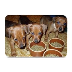 German Pinscher Puppies Plate Mats