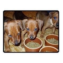 German Pinscher Puppies Fleece Blanket (Small)