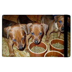 German Pinscher Puppies Apple iPad 2 Flip Case