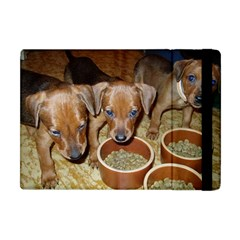 German Pinscher Puppies Apple iPad Mini Flip Case