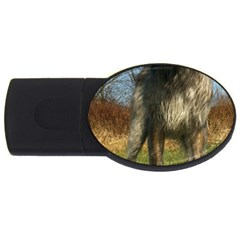 Irish Wolfhound full USB Flash Drive Oval (2 GB)