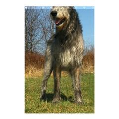 Irish Wolfhound full Shower Curtain 48  x 72  (Small)