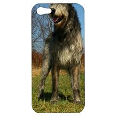 Irish Wolfhound full Apple iPhone 5 Hardshell Case