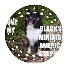 Mini Australian Shepherd Black Tri Love W Pic Ornament (Round Filigree)