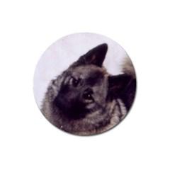 Norwegian Elkhound Magnet 3  (Round)