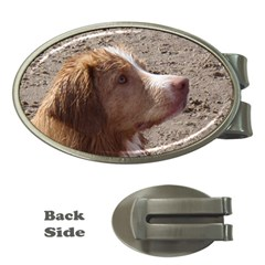 Nova Scotia Duck Tolling Retriever Money Clips (Oval)