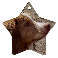 Nova Scotia Duck Tolling Retriever Star Ornament (Two Sides)