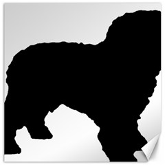 Spanish Water Dog Silhouette Canvas 12  x 12