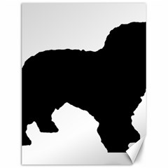 Spanish Water Dog Silhouette Canvas 12  x 16