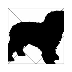 Spanish Water Dog Silhouette Acrylic Tangram Puzzle (6  x 6 )