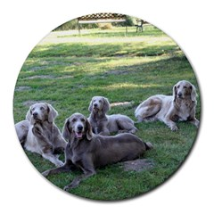 Longhair Weims Round Mousepads