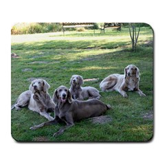 Longhair Weims Large Mousepads