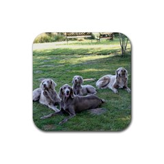 Longhair Weims Rubber Square Coaster (4 pack)
