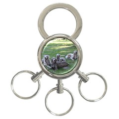 Longhair Weims 3-Ring Key Chains