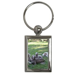 Longhair Weims Key Chains (Rectangle)