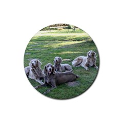 Longhair Weims Rubber Coaster (Round)