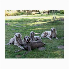 Longhair Weims Small Glasses Cloth
