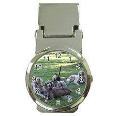 Longhair Weims Money Clip Watches