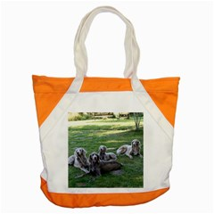 Longhair Weims Accent Tote Bag