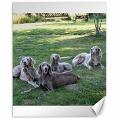 Longhair Weims Canvas 16  x 20