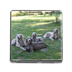 Longhair Weims Memory Card Reader (Square)